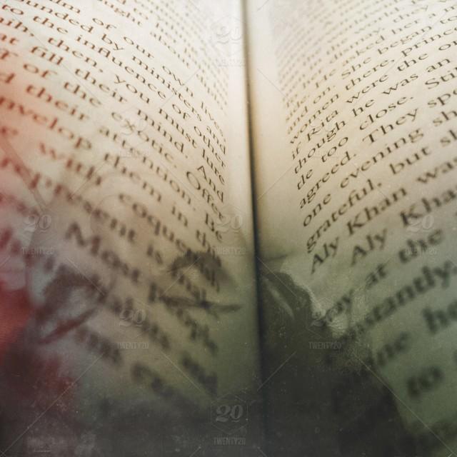 100000个故事中的性别与动词分析:有一些很有意思的发现