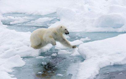 求职冷冻期:冷冷的冰雨在心上胡乱地拍