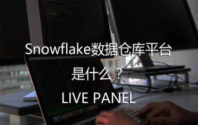 What is Snowflake Data Warehouse Platform?